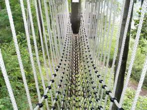 היער השחור, פארק חבלים