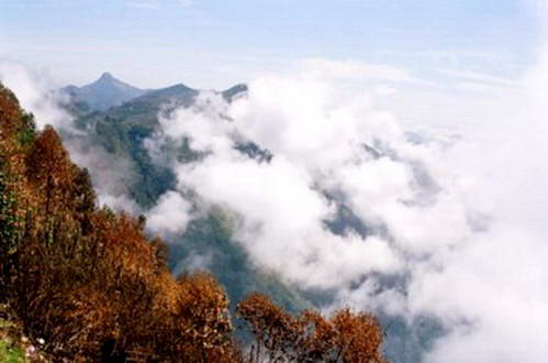 גבעות נילגירי - תצפית מקודאי קאנאל