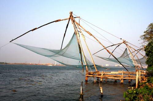 רשתות הדיג הסיניות