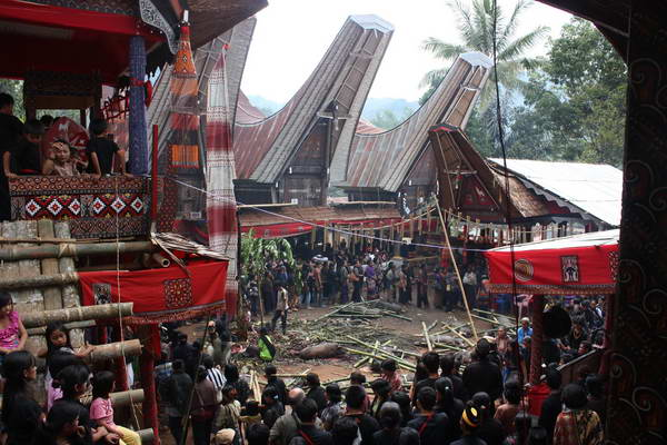 טקס קבורה, האי סולאווסי, אינדונזיה
