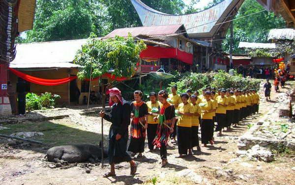 הלוויה באינדונזיה