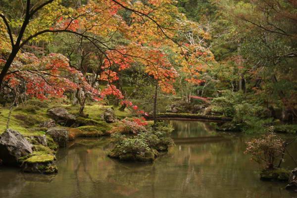 קיוטו, ממקדש סייהוג'י