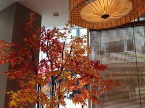 המלצה על מלון במרכז קיוטו, יפן
