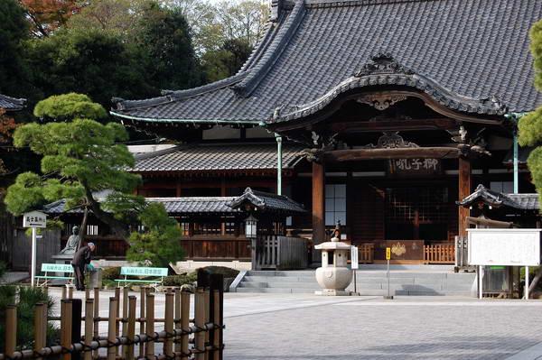 מקדש סנגקוג'י בטוקיו