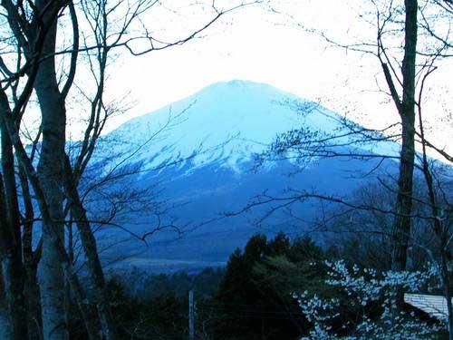 יפן, פריחת הדובדבן, הר פוג'י