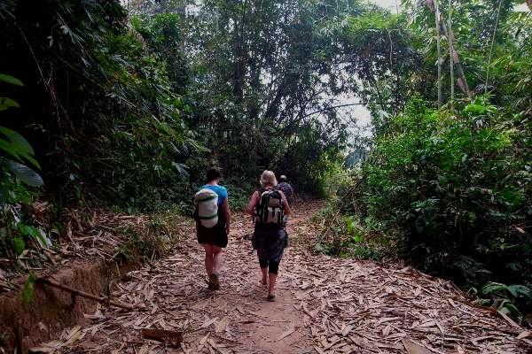 טיול בג'ולנגל הטרופי של לאוס