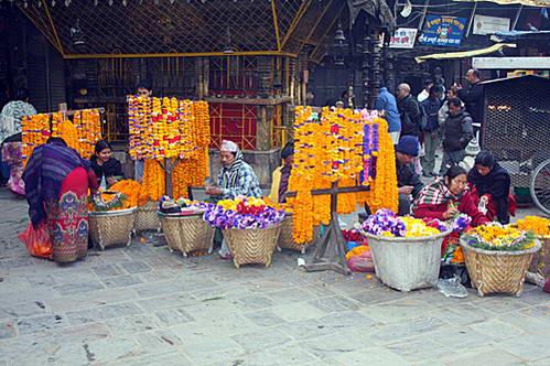 מוכרות הפרחים בכניסה למקדשים, נפאל