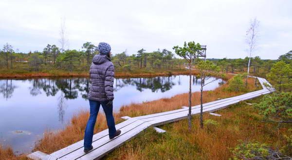 יורמלה, שמורת טבע ופארק ביצות
